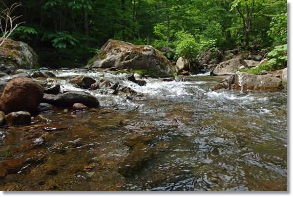 渓流の澄んだ流れ