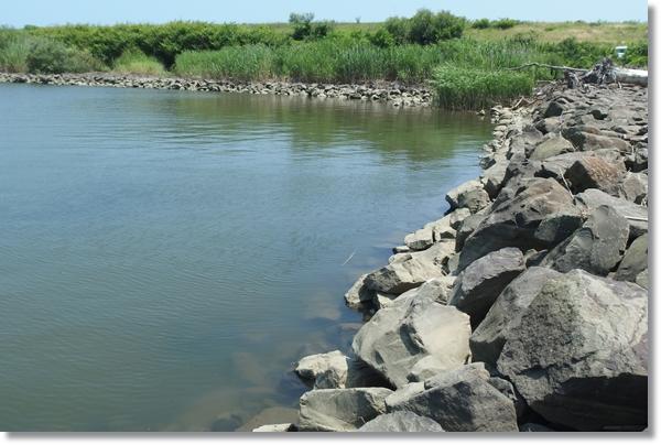 捨て石がある川原の風景