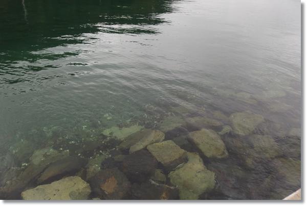 岸壁から見えるごろた石が沈む海底