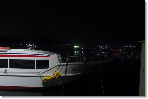 夜の港に係留される観光船