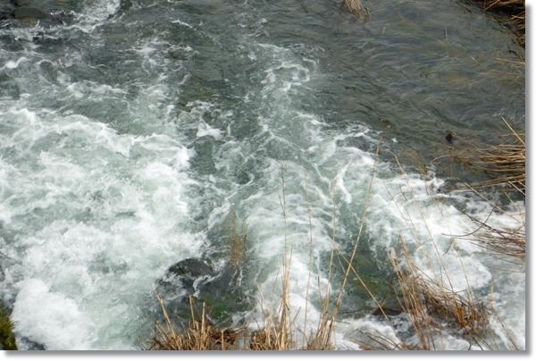 白泡を立てて増水する河川