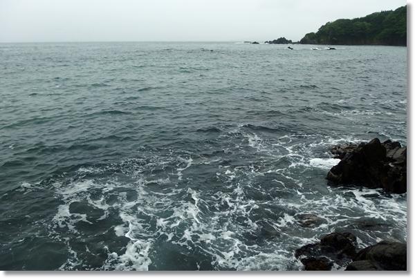 石巻十三浜の磯からの眺め
