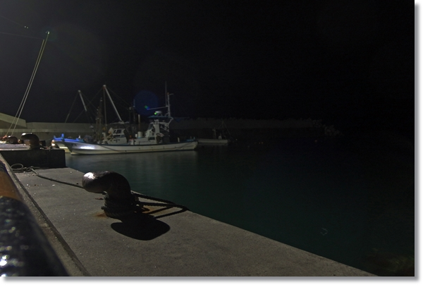 石巻十三浜小指漁港