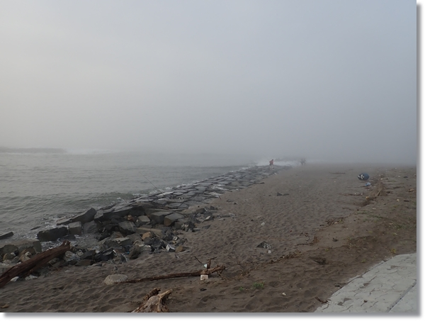 朝霧に包まれた鳴瀬川河口