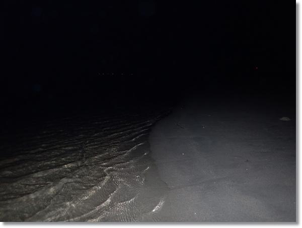夜の鳴瀬川河口の砂浜