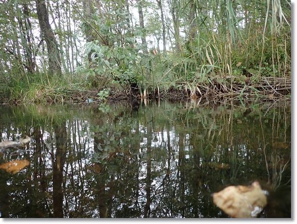 曽原湖から流れ出る小川