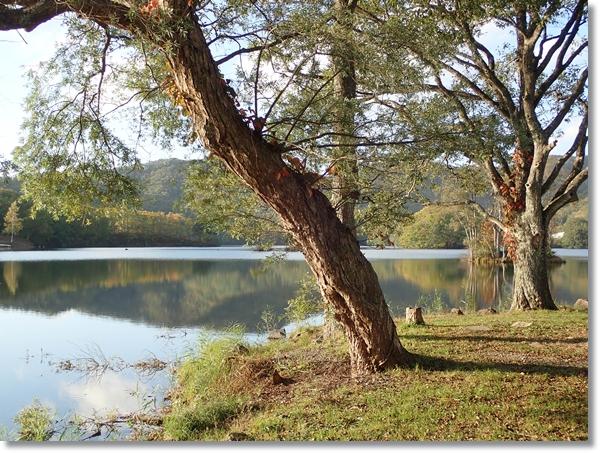 夕暮れ近い曽原湖湖畔