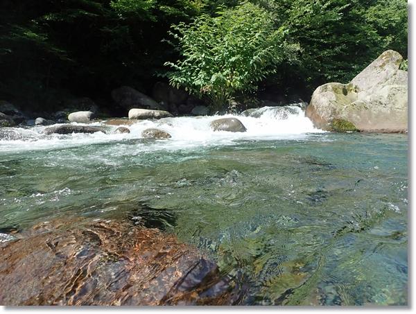 夏の澄川のきれいな流れ