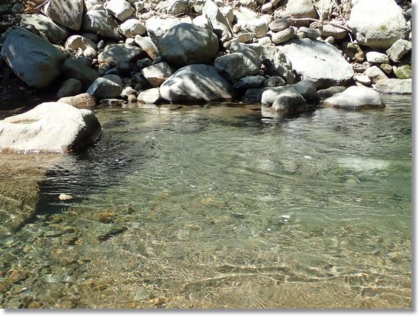 長谷倉川の綺麗な流れ