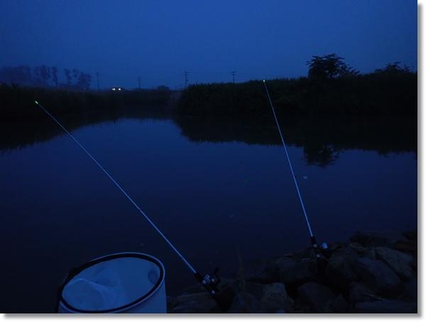 増田川でウナギ釣り