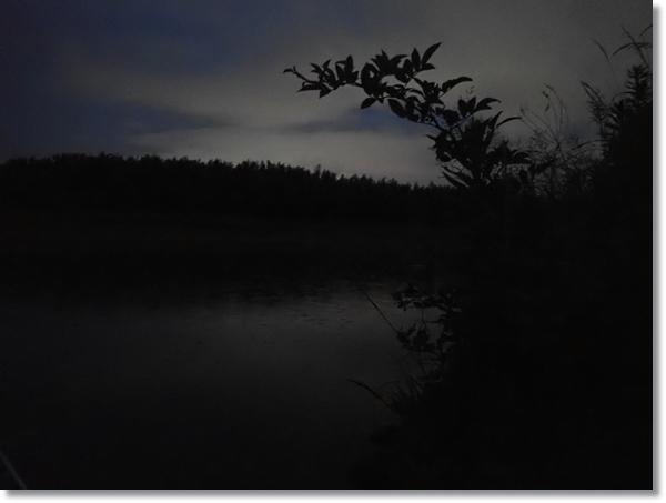 雨の降る名取川の夕マズメ