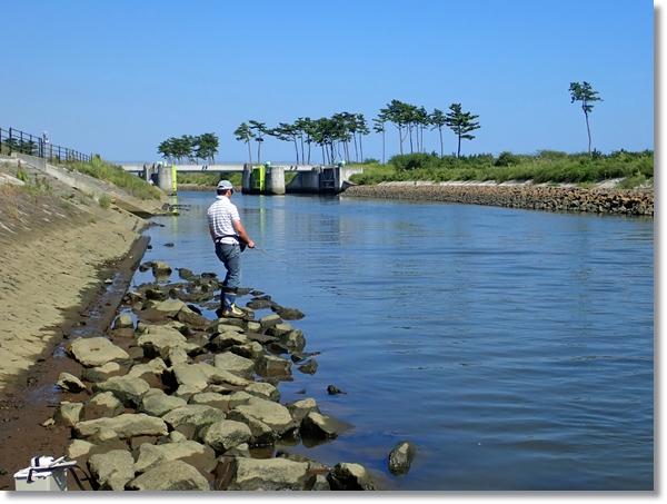 貞山運河でエビ釣りをする人