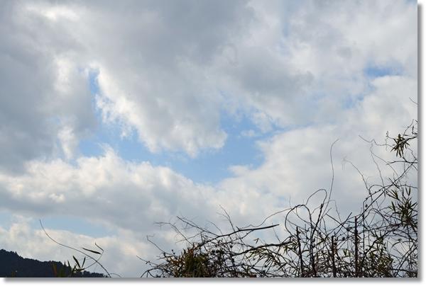 春の曇り空