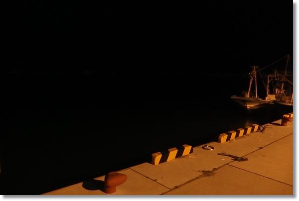 牡鹿半島の夜の漁港
