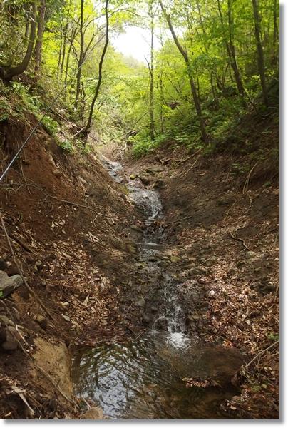 川の源流部の小さな流れ