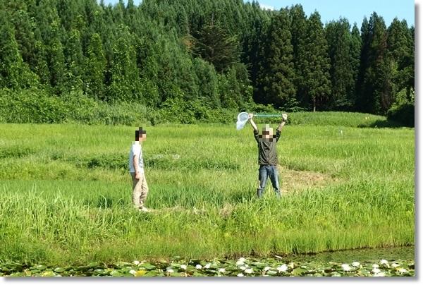 草原にいる大人二人