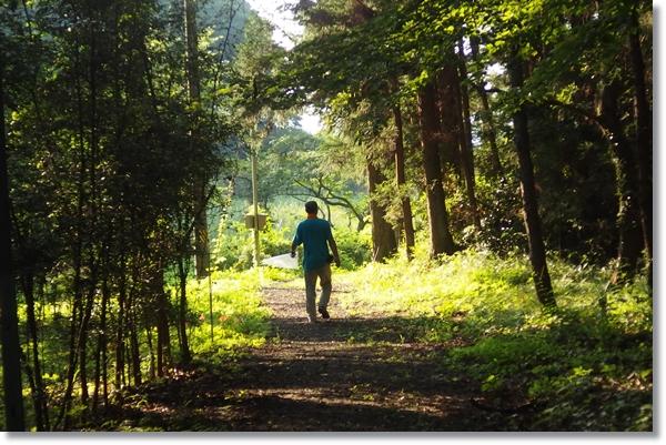 公園の道を歩く人