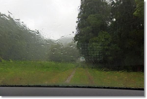 車の中から雨の農道