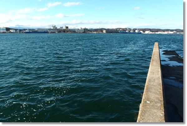 対岸に見える港