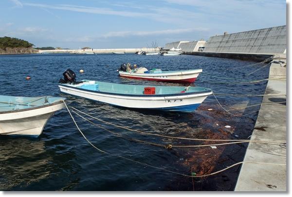 漁港に係留されている小舟