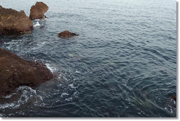 岩場の多い海岸