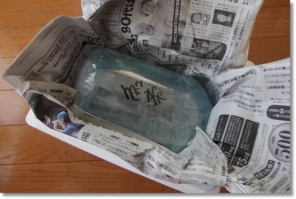 ビニール袋で酸素パッキンされ発泡容器に入った紅帝の稚魚