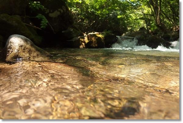 キラキラ輝く沢水