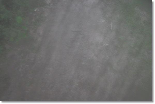 曇って何が写っているかわからない写真