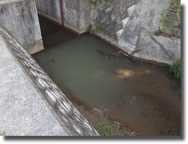 濁り水が流れる用水路