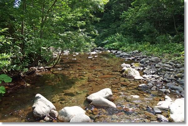 真夏の渓流