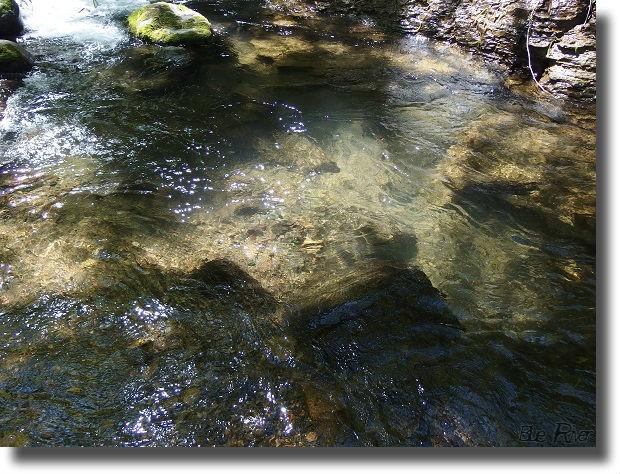 木漏れ日の中の渓流