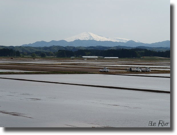 代搔き鳥海山