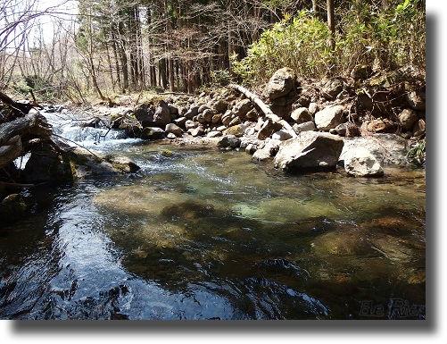 早春の渓流