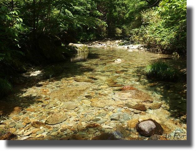 綺麗な水が流れる渓流
