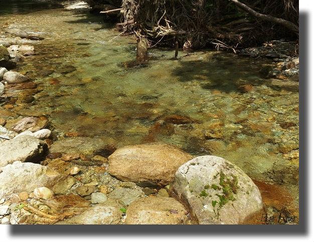 綺麗な水が流れる流れ