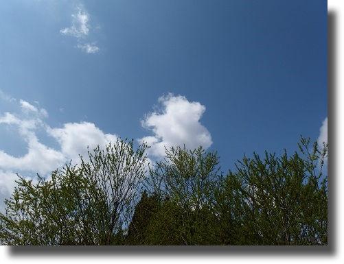 渓流から見た青空