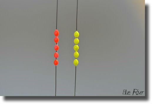 タナゴシモリ、赤と黄