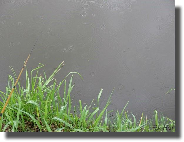 雨の中の釣り