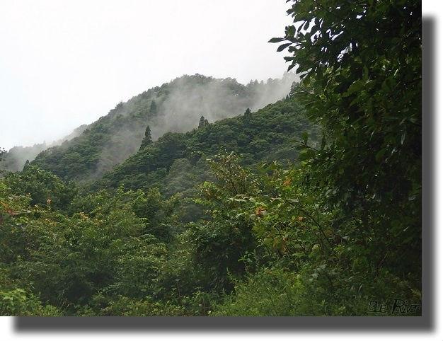 朝もやが晴れていく山