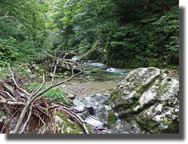 山奥の渓流