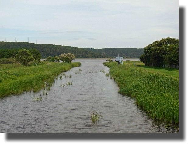 沼に流れ込む河川