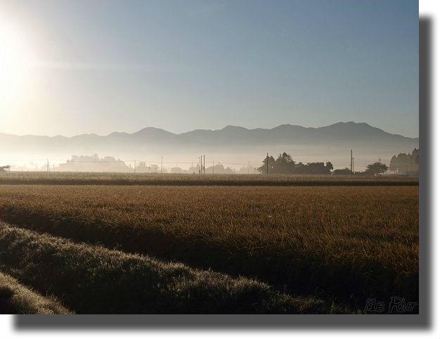 朝もやの中の田園風景