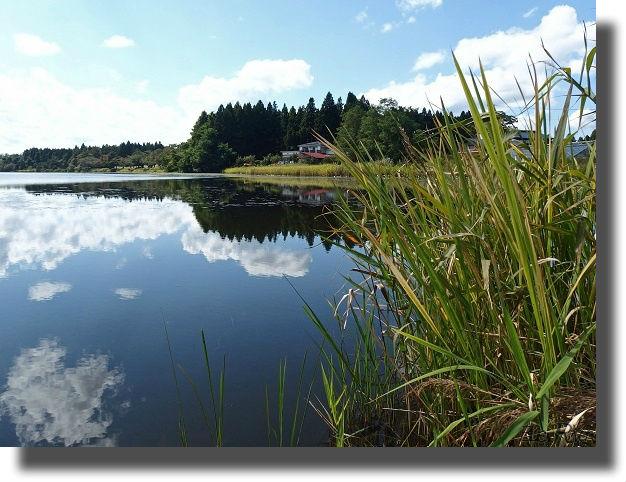 沼のある風景