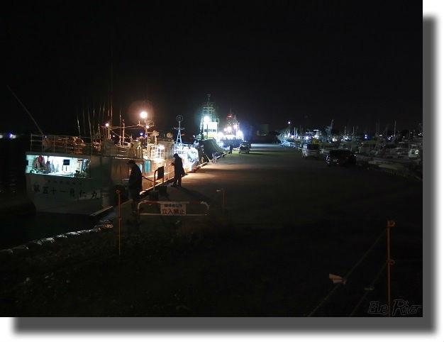 港での夜釣りの風景