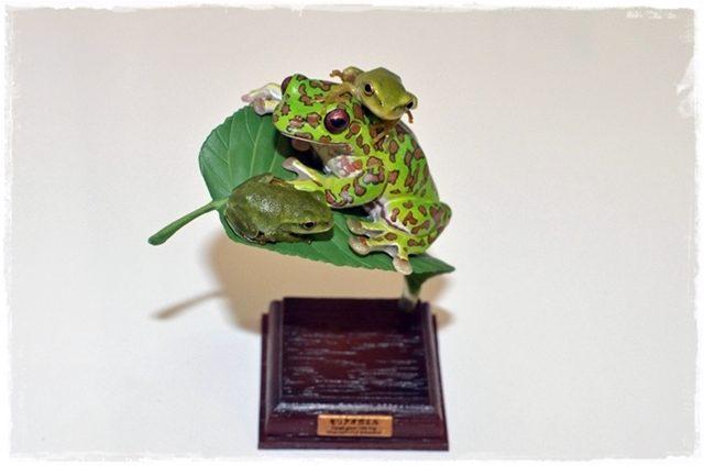 モリアオガエルのフィギアにのるモリアオガエル