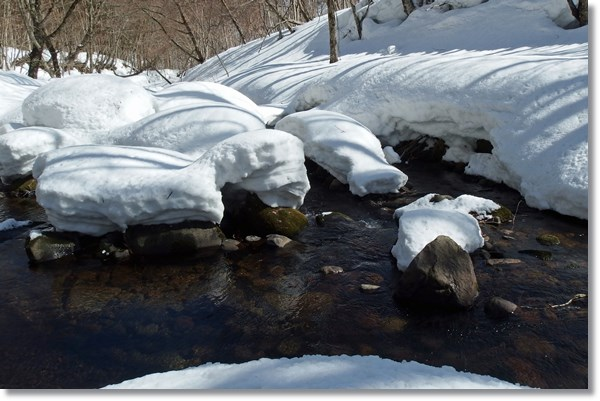雪が残る早春の渓