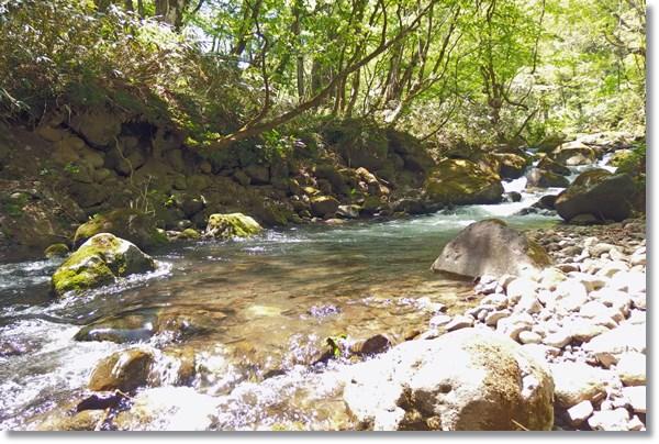 早春の谷川の流れ