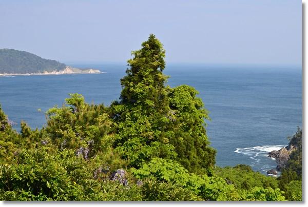展望台から眺めた牡鹿半島