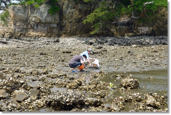 海辺で砂を掘る男二人