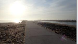 朝の鳥の海河口